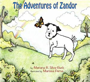 ]The adventures of Zandor