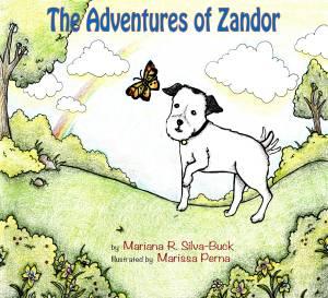 ]The adventures of Zandor