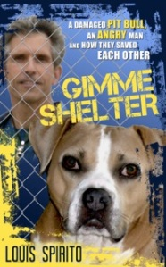 Gimme.Shelter.Cover copy_2