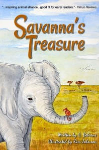 Savanna's treasure book cover