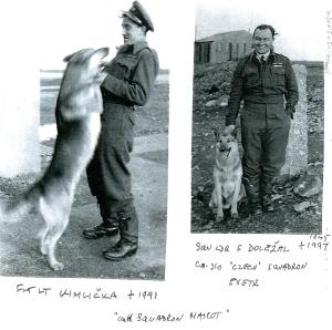 Czechairmen dog overs