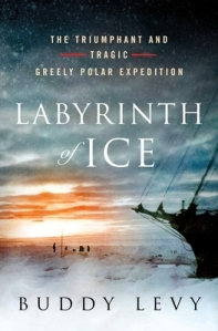 LABYRINTH OF ICE by Buddy Levy