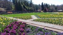 Biltmore Garden 2015